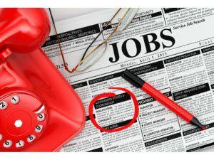 job_search_shutterstock_300 wide