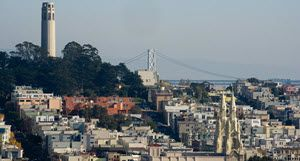 SF View 300 wide
